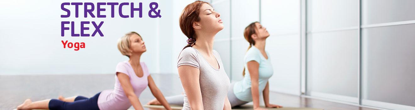 yoga-tator